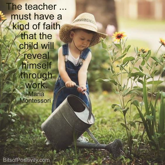 Maria Montessori Quotes And Sayings (3)