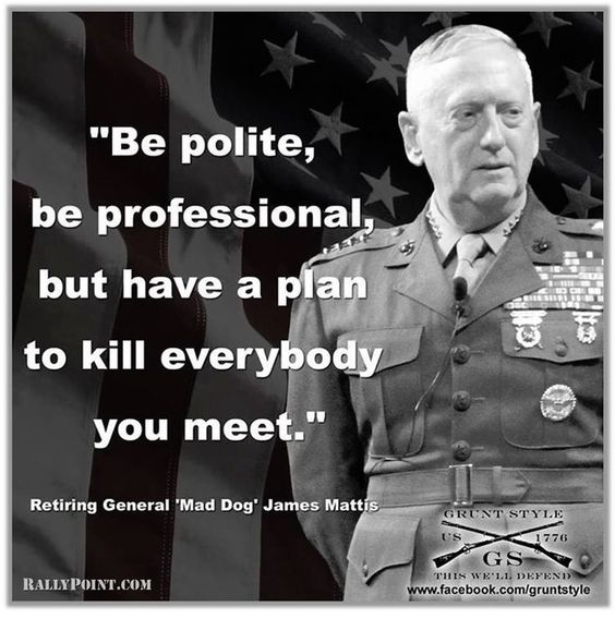 Mattis Quotes And Sayings (3)