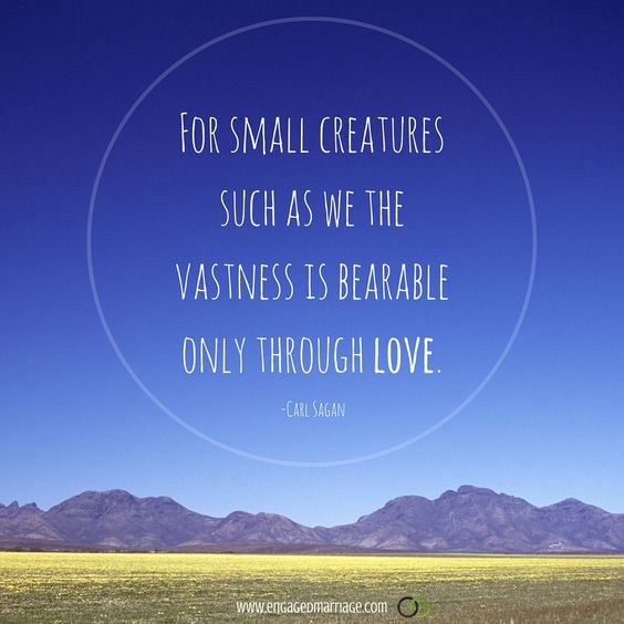 For small creatures such as we, the vastness is bearable only through love. - Carl Sagan