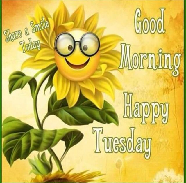 Good Morning Quotes Happy Tuesdayto Everyone Share A Smile
