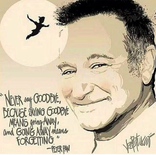Robin Williams Hook Quotes (3)